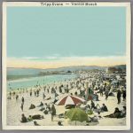 Tripp Evans - Venice Beach